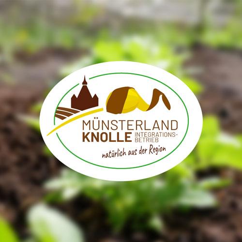 Münsterland Knolle - Kartoffeln aus der Region